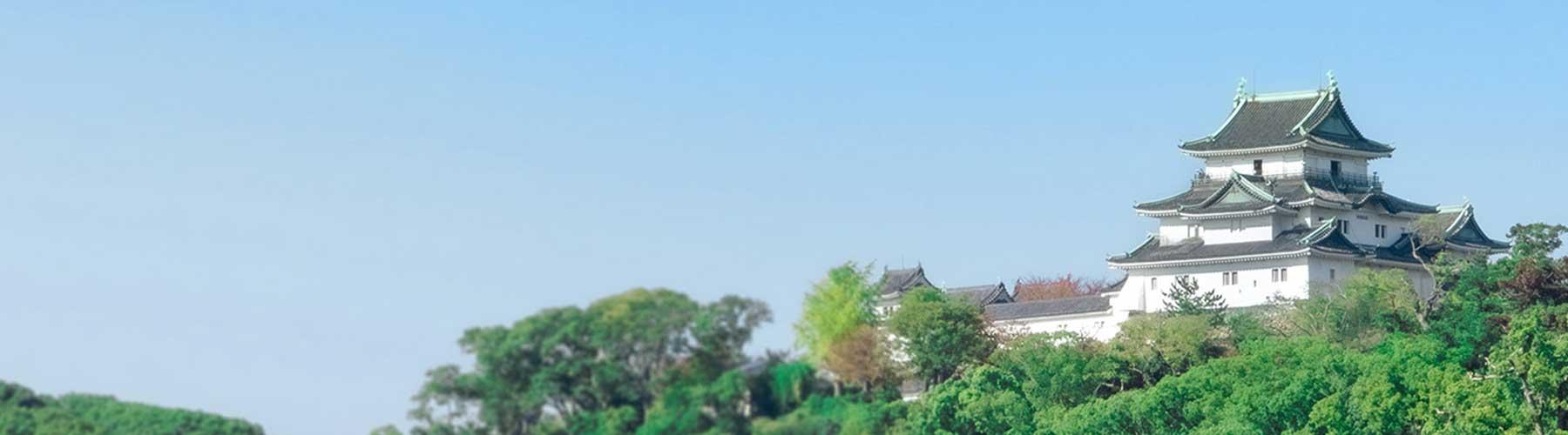 事務所から見える和歌山城